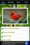 Angry Clumzy Bird screenshot 2/6