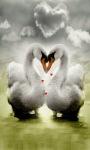 Swan In Love Live Wallpaper screenshot 1/3