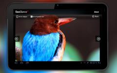GeoGlance - Wallpapers HD screenshot 1/1