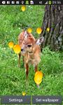 Wild Animal Live Wallpapers Free screenshot 1/6
