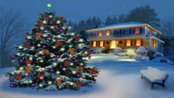 Christmas Tree In The Park screenshot 1/2