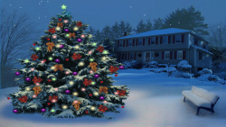 Christmas Tree In The Park screenshot 2/2
