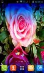 Rainbow Rose Flowers Live Wallpaper Best screenshot 2/4
