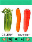 Vegetables Name with Photos screenshot 3/3