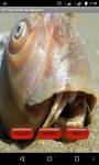 Sea Shell Wallpapper Lite screenshot 3/4