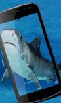 Shark Wallpaper HD screenshot 1/3