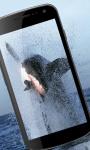 Shark Wallpaper HD screenshot 3/3
