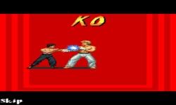 Bruce Lee Iron screenshot 1/6