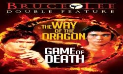 Bruce Lee Iron screenshot 5/6