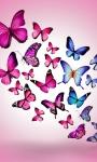 Butterfly Wallpaper_1 screenshot 4/4