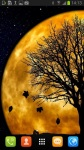Beautiful Moon Silhouette Live Wallpaper screenshot 2/3