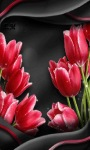 Red Tulip Flower LWP screenshot 2/3