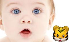 Emoji Camera Sticker Maker FREE screenshot 2/6