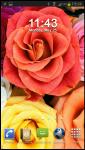 Free Wallpaper Flower v1 screenshot 5/6