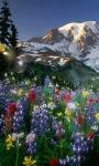 Magical Land Live Wallpaper screenshot 2/3