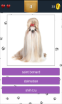 Dog Breeds App Quiz screenshot 2/5