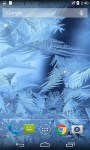 Ice Live Wallpaper Pro screenshot 3/4