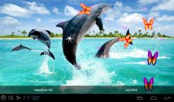 3D Dolphin Live Wallpapers screenshot 1/5