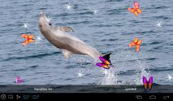 3D Dolphin Live Wallpapers screenshot 4/5