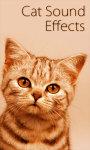 Talking Cat Sounds - Window screenshot 1/3