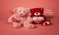 Valentines Day Love SMS screenshot 1/1