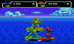 Turtles 5 Teenage Mutant Ninja Turtles  screenshot 2/4