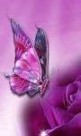 Purple Butterfly Live Wallpaper screenshot 1/3