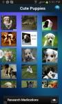 Free Cute Puppies Wallpapers screenshot 1/3