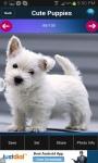 Free Cute Puppies Wallpapers screenshot 2/3