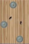 Kill Roach screenshot 3/3