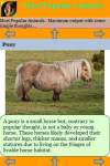 Most Popular Animals screenshot 3/3