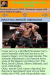 Finishing Moves In WWE screenshot 3/3