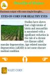 Benefits of Maizes screenshot 1/3