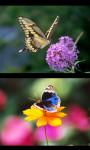 Best Butterfly Gallery screenshot 2/4