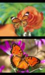 Best Butterfly Gallery screenshot 3/4