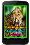 Most Dangerous Animal in the World  screenshot 1/3