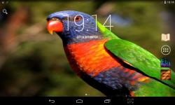 Colorful Parrots Live screenshot 2/4
