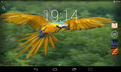 Colorful Parrots Live screenshot 4/4