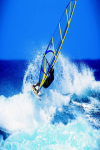 Rules to play Windsurfing screenshot 2/4