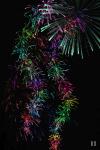 Fireworks Arcade screenshot 5/5