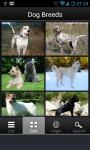 Dog Breeds Collection screenshot 2/6