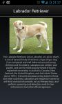 Dog Breeds Collection screenshot 6/6