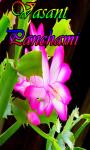 Vasant Panchami screenshot 1/3