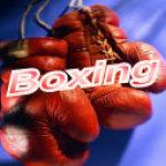 Boxing screenshot 1/1