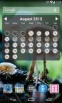 Lady Pill Widgets special screenshot 6/6