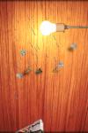 Moth  Stapler screenshot 2/2