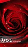 Free Rose wallpapers screenshot 1/5