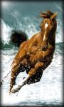 Horse Live Wallpaper Horse screenshot 1/6