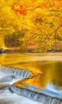Golden Nature Live Wallpaper screenshot 3/3