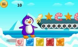 Funny Penguin Feeding - Great Adventure screenshot 2/3